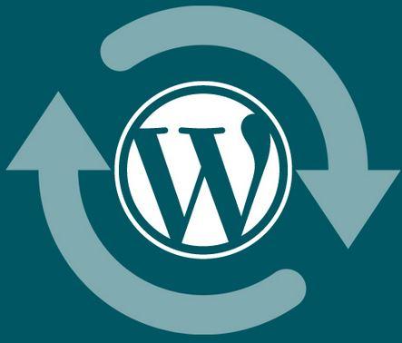 WordPress-Update_emrsupcin